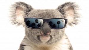 Massive Pokies Wins in Australia