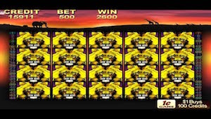 massive pokie wins in 2016
