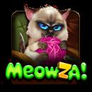 Meowza!