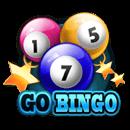 Go Bingo!
