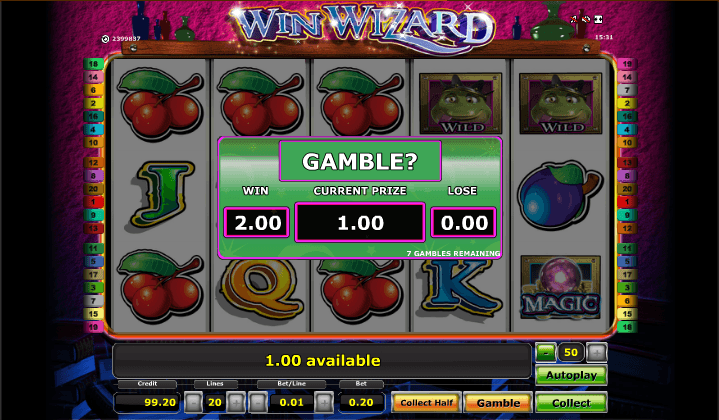 Online Slots: Gamble Features