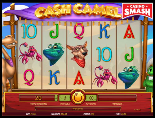 slot machine basics Cash Camel