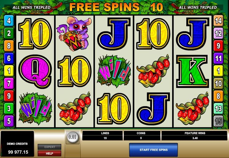 bush telegraph slots play online
