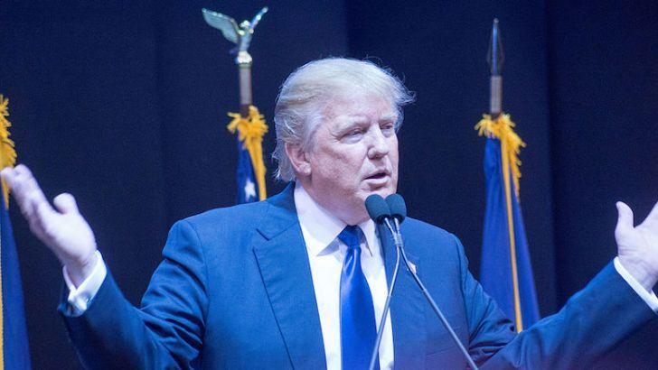 Donald Trump Mob