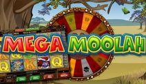 $10,423,223 Jackpot Won At Mega Moolah Mega!