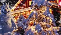 "Royal Panda Launches the ""December Calendar!"""