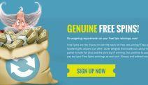 Thrills Casino Free Spin Bonus
