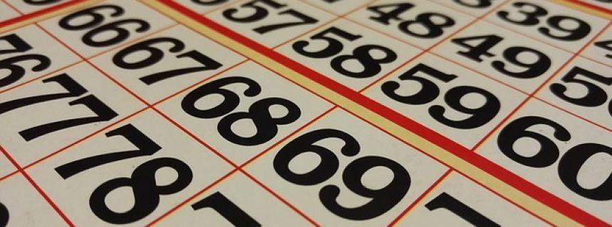 Online bingo tips