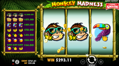 Monkey Madness Video Game
