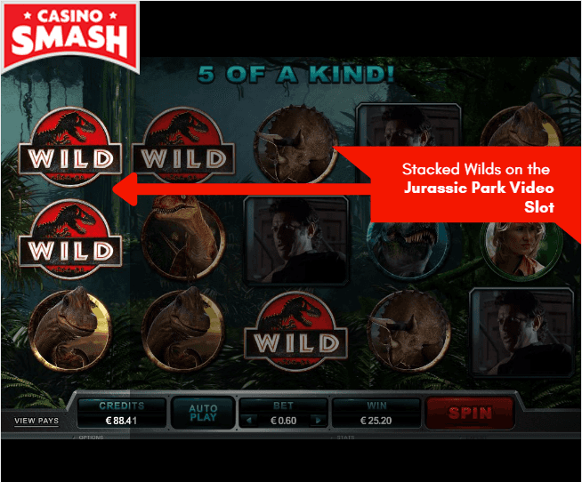 Expanding Wilds on Slot Games – Learn How These Symbols Work